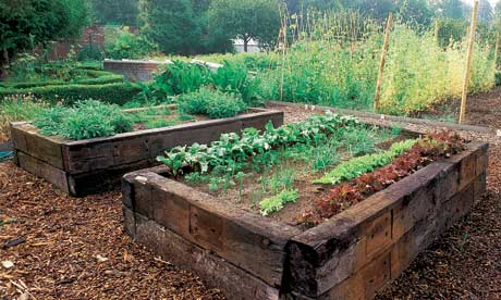 As The Above Photos Indicate Raised Beds Can Be Almost Any Size Which Is Practical And Functional For Individual Grower Length Width Of